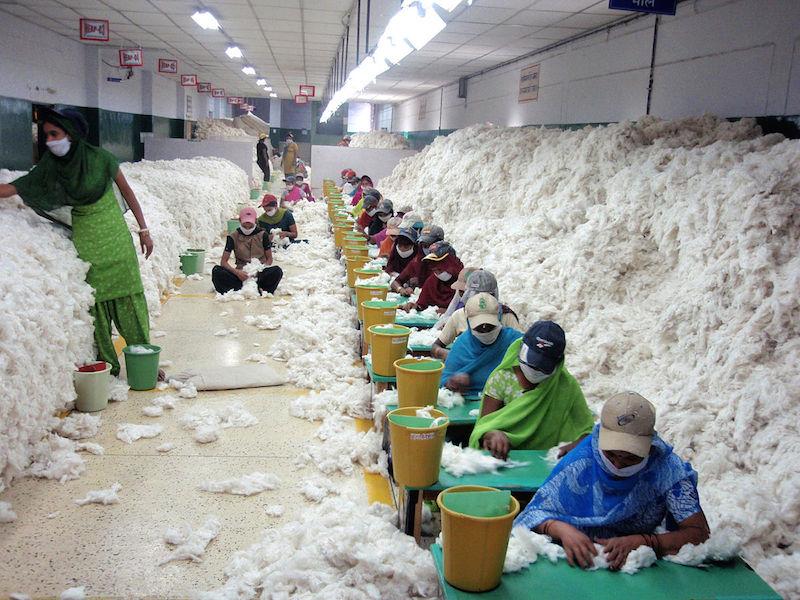 Organic Cotton, Know its Advantages